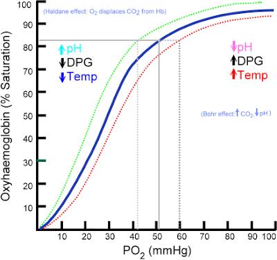 Phimaimedicine: 211. Oxygen-hemoglobin dissociation curve