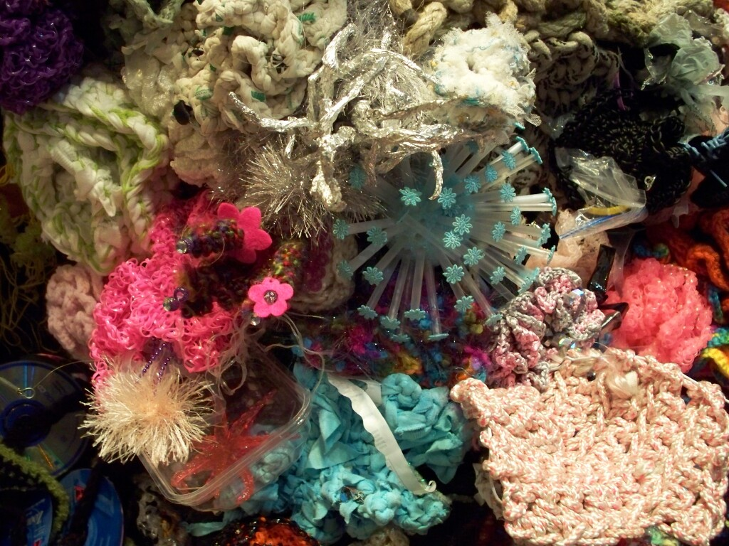 Crochet Coral Reef : Orange explains it all: crochet the coral reef