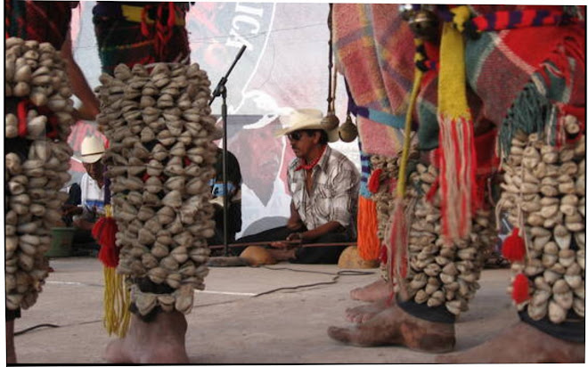 Indentidad indígena