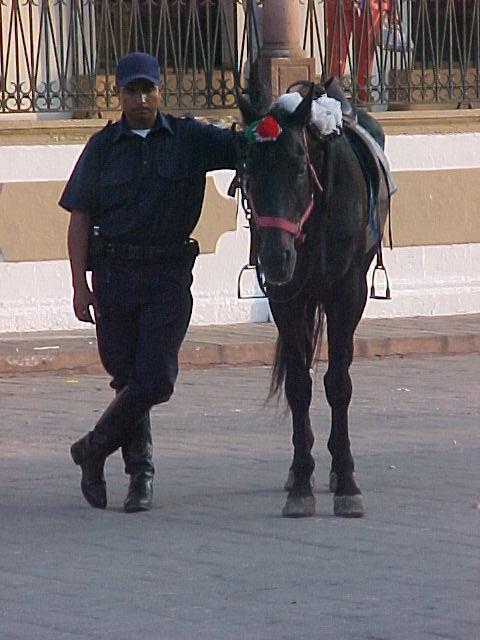 La H. Policia Montada de Culiacán