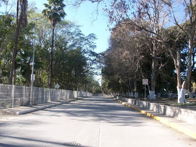 Nueva urbanización de Eldorado