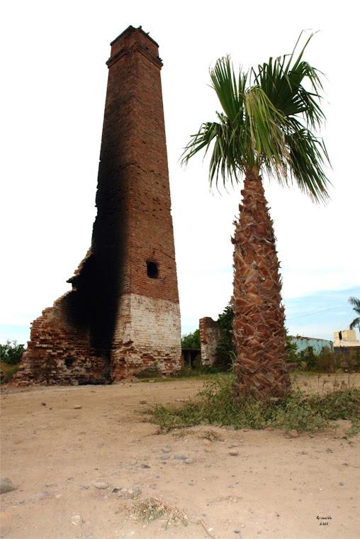 El pitón de Oso Viejo, SIndicatura de Quilá, municipio de Eldorado