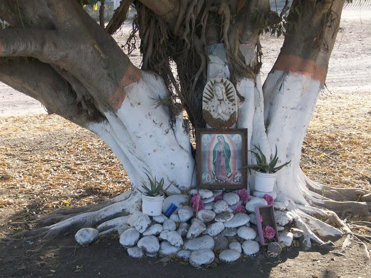 Singular altar guadalupano en le valle del Río San Lorenzo