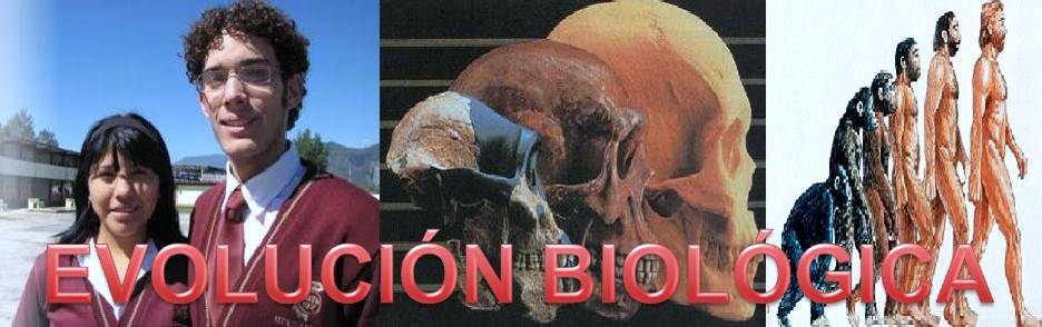 Evolucion CBTis 192
