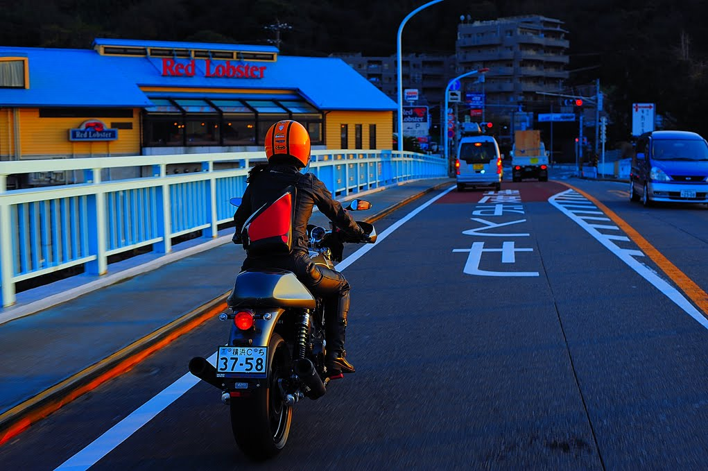 [江ノ島画像1210 DSC_0080.jpg]