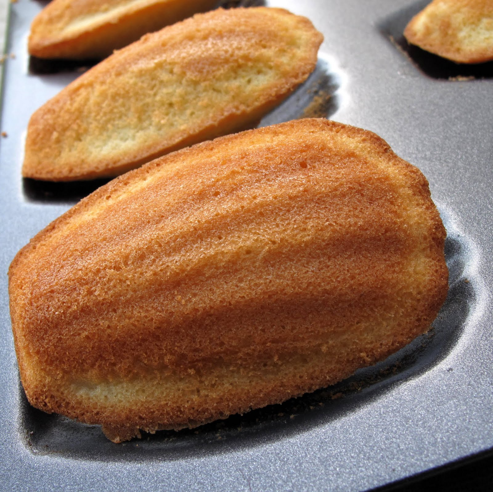 bakies: Lemon glazed madeleines