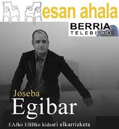 Joseba Egibar ESAN AHALA Berria Telebistan