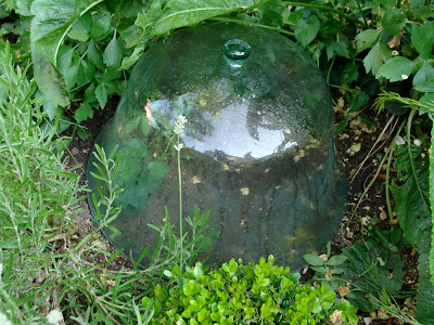 La brocanteuse to cloche or not - Cloche de jardin en verre ...