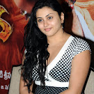 Namitha Decent Look   Cute Pictures