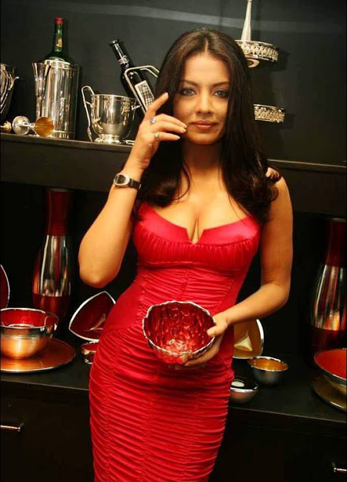 celina jaitley celeina jaitley red dress picture actress pics
