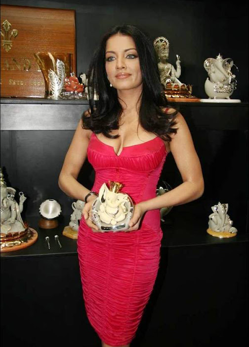 celina jaitley celeina jaitley red dress picture photo gallery
