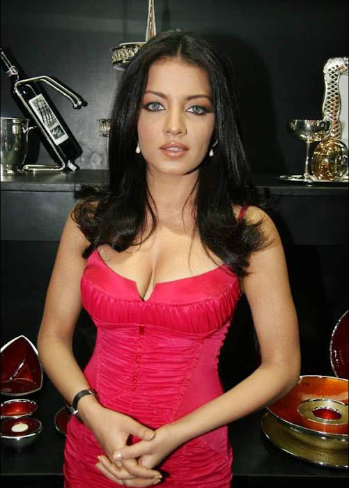celina jaitley celeina jaitley red dress picture hot photoshoot