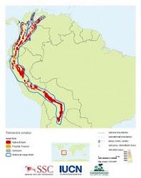 Distribución del Oso Andino