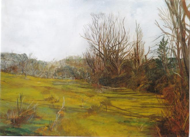 Petit paysage de bord de ruisseau.