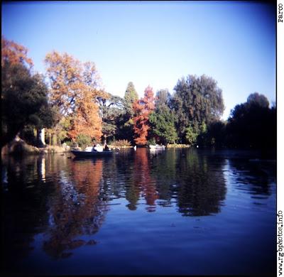 Fotografia di laghetto con barca a remi in un parco cittadino contornato di alberi in autunno