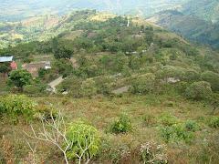 """""""Los Palmares"""", entre Las Cumbres y La Mulata:"""