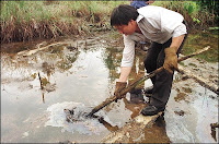 Ecuador's oil spill - a damning case against all oil extraction
