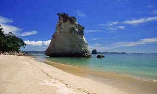 New Zealand Beach Wallpaper