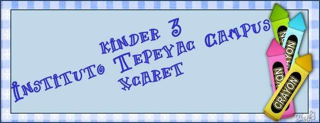 Grupo K 3 del Instituto Tepeyac Xcaret