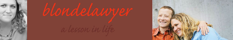 "blog header - ""Blonde Lawyer"" Blogger Chimes in on ScanMyPhotos.com"