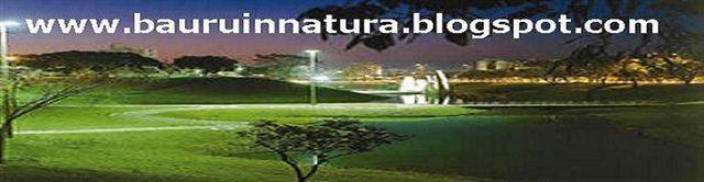 www.bauruinnatura.blogspot.com