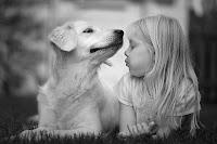 criancas e animais