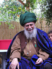 Sulthan al Awliya Sayyidi Syaikh Mawlana Muhammad Nazim Adil Al Haqqani q.