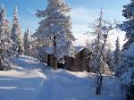 MIS BLOGS: Paisajes nevados