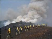 Brigada de Incêndio florestal