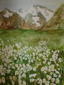 Fiori bianchi in montagna