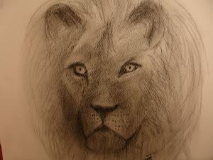 disegno di leone a matita