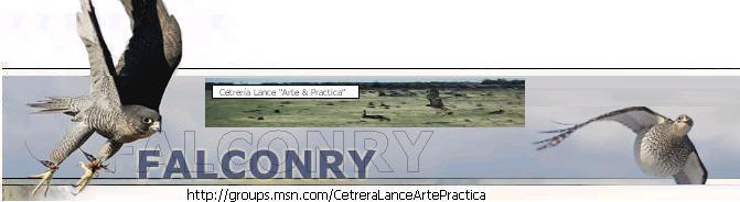 """Cetreria Lance """"Arte &Practica"""""""