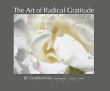 The Art of Radical Gratitude Book