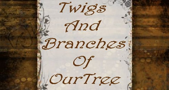 Branches of Our Tree