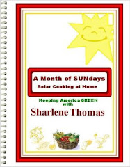 My Solar Cook Books 1 & 2