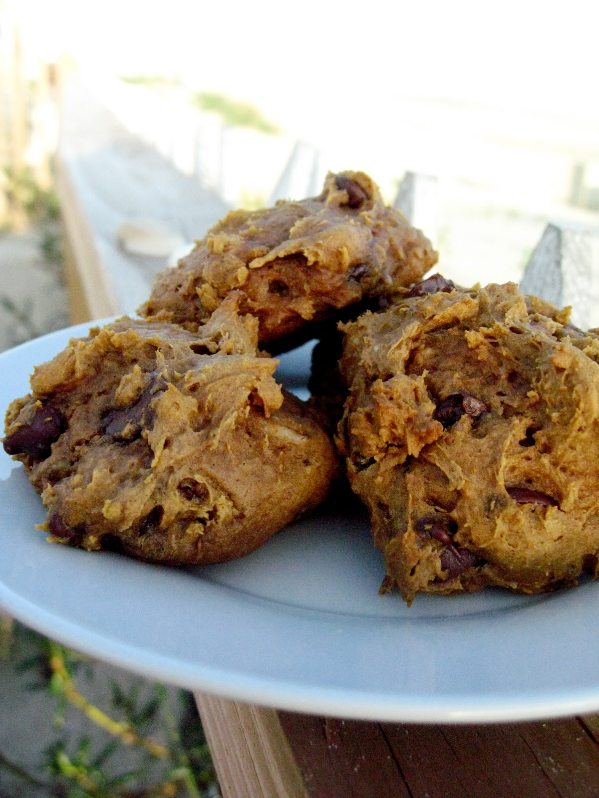 Pumpkin Chocolate Chip Spice Cookies - Your Cup of Cake