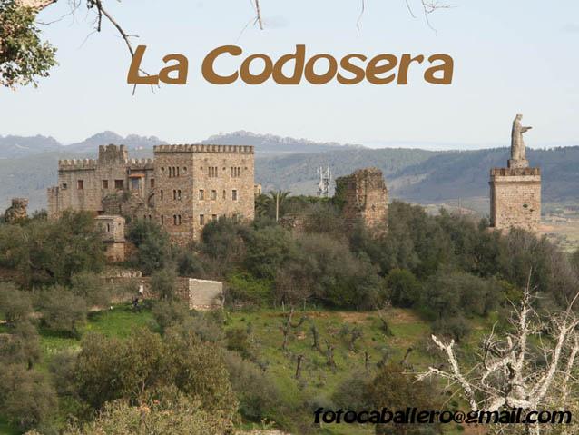 LA CODOSERA.
