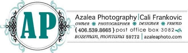 Azalea Photography