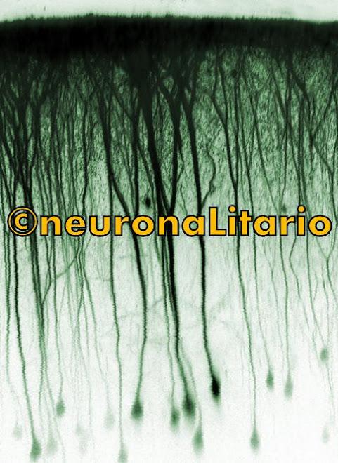 ©neuronaLitario