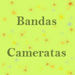 Bandas e Cameratas