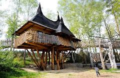 Rumah Atas Pokok