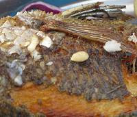 Grilled fish from Galilee