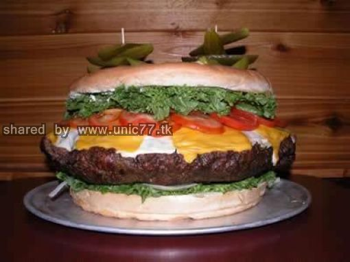 giant_cheeseburger_640_07.jpg (510×382)