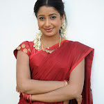 reshmi telugu anchor in saree photo stills