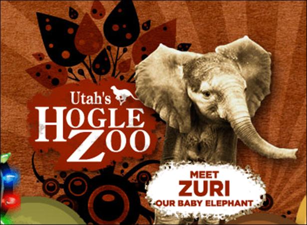 hogle zoo free day  »  8 Image »  Amazing..!