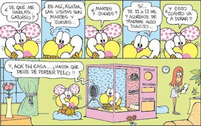 Humor argentino