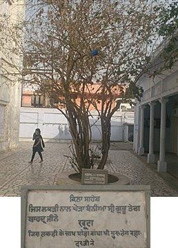 Gurdwara Gau Ghat: Guru Teg Bahadar Ji tied his horse here.