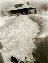 Probst Midway Home, Winter 1949