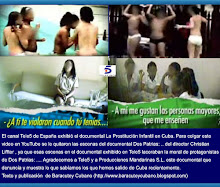 http://www.cubademocraciayvida.org/web/article.asp?artID=7583