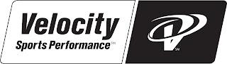 ECOthon+Velocity+Sports+logo+bw.jpg